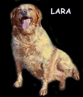 LARA 1 (2)