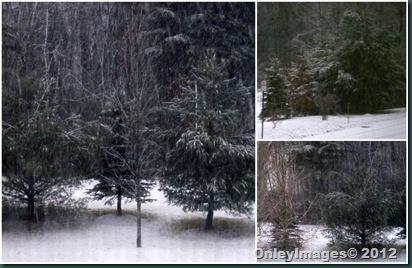 NH snow1