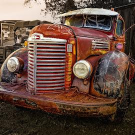 International Truck by Ron Meyers - Transportation Automobiles