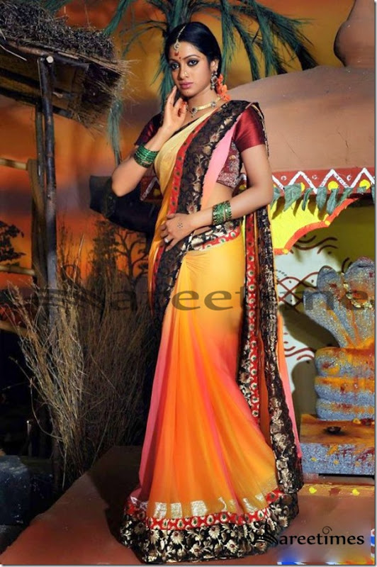 Udhaya_Bhanu_Dual_Color_Saree (1)