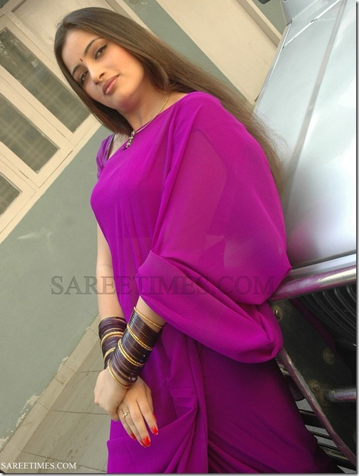 Navneet_Kaur_Purple_Plain_Saree (2)