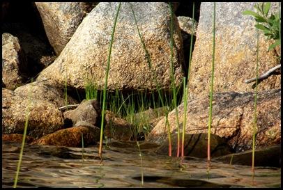 On Jordan Pond 115