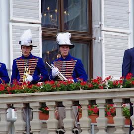 by Jozef Šolc - News & Events Politics ( politics, people, flower )