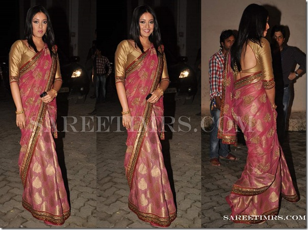 Designer_Saree_Telly_Chakkar_Awards_2011 (3)