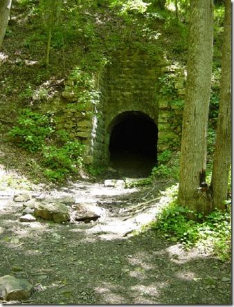 L_S_trail1