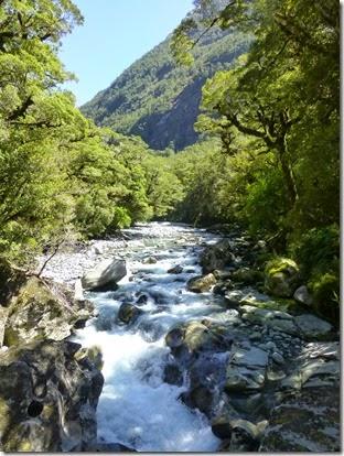 NZ JH 11 Feb 2015 362