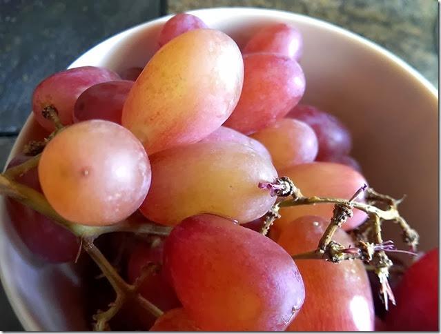 grapes-public-domain-pictures-1 (2234)
