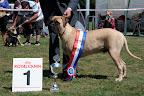 BMCN Kampioenschaps Clubmatch 2011-7436.jpg