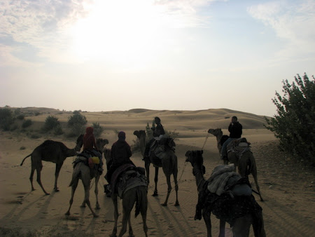 Desert Safari India