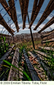 'Fence' photo (c) 2009, Emilian Tiberiu  Toba - license: http://creativecommons.org/licenses/by/2.0/