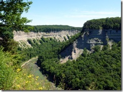 Genesee River Gorge at Letchworth State Park NY