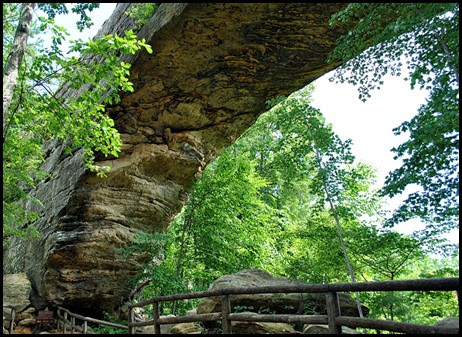 16 - Back Under Natural Bridge