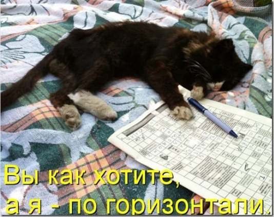 1313674161_kotomatrix_41