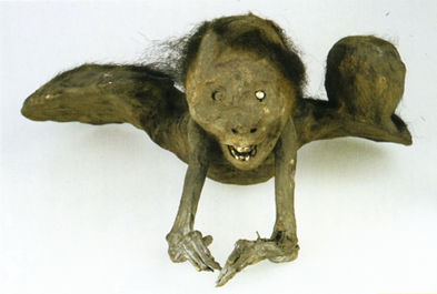 Criatura japonesa momificada