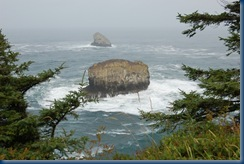 Oregon coast Tilamook 055