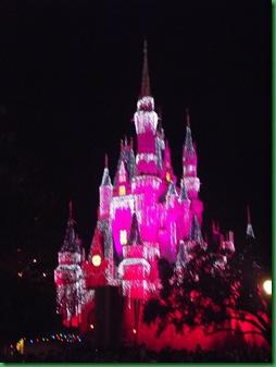 Disney Day 1 (82)