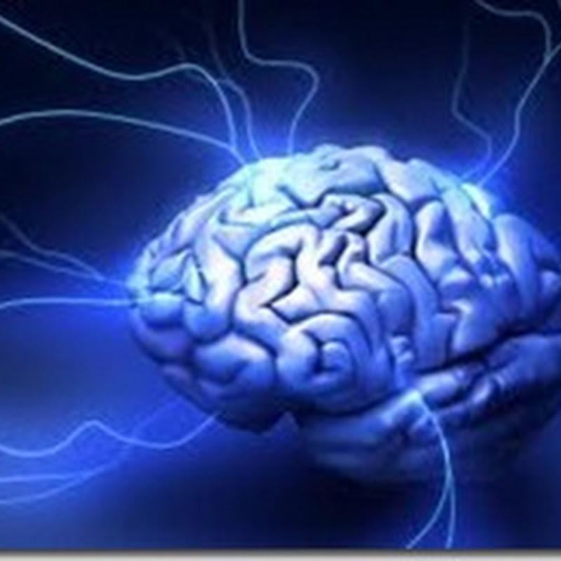 تعرف على نسبة ذكائك وقارنها بالمشاهير - IQ Test