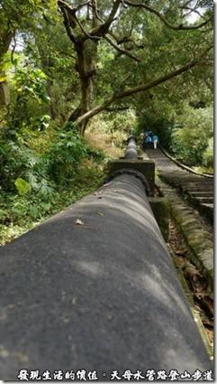 天母水管路登山步道旁的黑色大水管