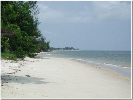 playa13