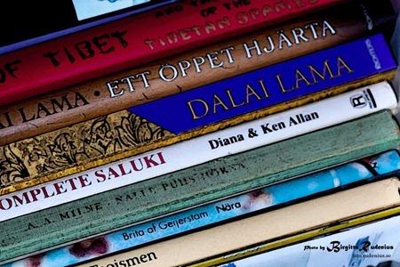 diverse_20111117_books