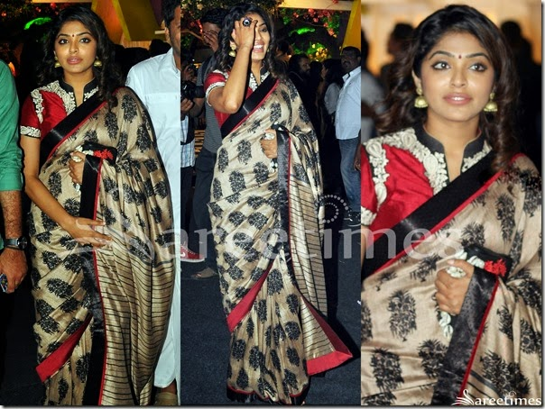 Rima_Kallingal_High_Neck_Saree_Blouse