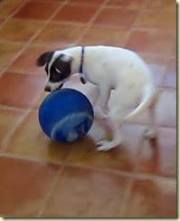 b-ball 1