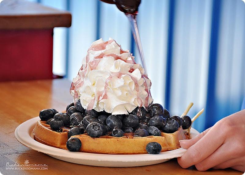 Blueberry-waffle-(1)