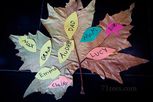 2012-11-07 Fall 65264