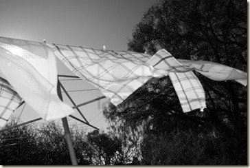 tea-towels-on-the-washing-line