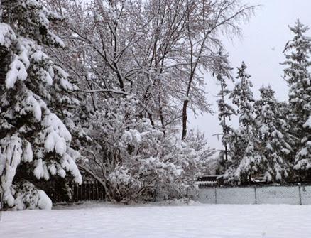 ottawa-s-first-big-snow