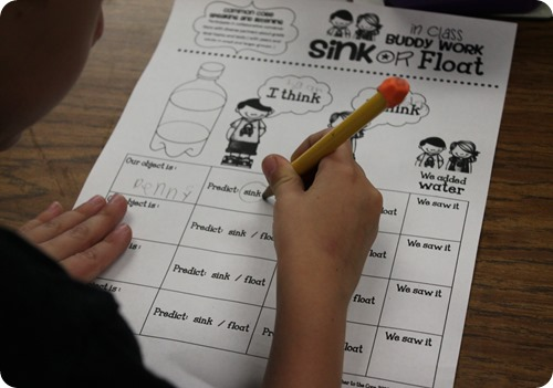 Sink or float buddy science project predicting together