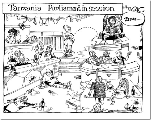 EA May 06 13 TZ Parliament in session (2)
