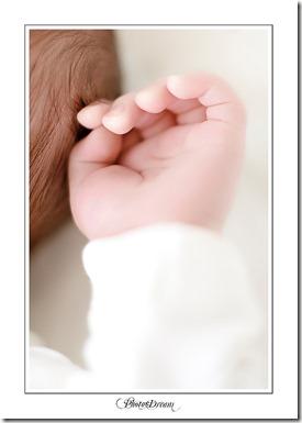Photo-Dream_085 copy