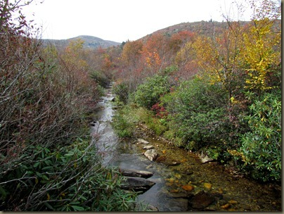 stream along trail at graveyard fields