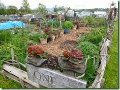 ColonFarm garden3