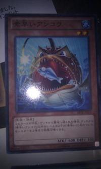 300px-NimbleGoosefish-ABYR-JP-C