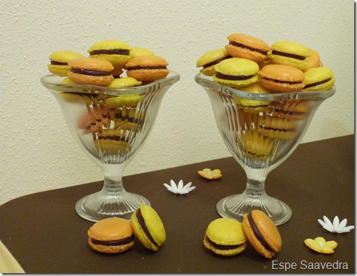 macarons espe saavedra (2)