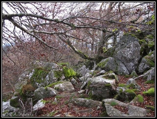Arangoiti-Castellar 040
