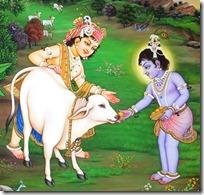 Krishna's play in Vrindavana