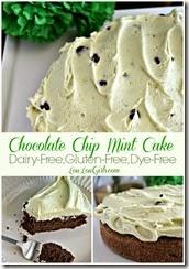 Chocolate-Chip-Mint-Cake-Dairy-Gluten-Dye-Free