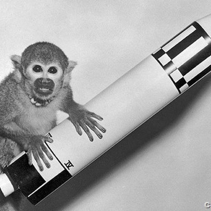 10 BEASTLY TALES OF ANIMALS IN SPACE