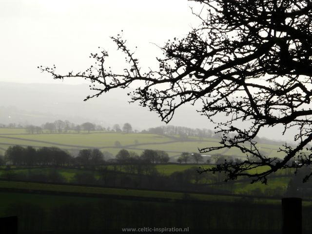 spirituele-reis-dartmoor-engeland-17.JPG
