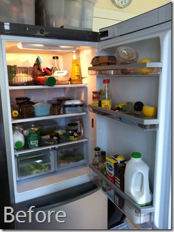 Fridge Before Photo