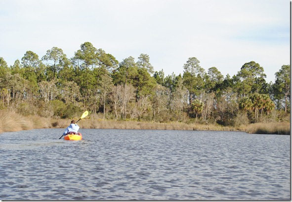 Paddling the Pellicer Creek