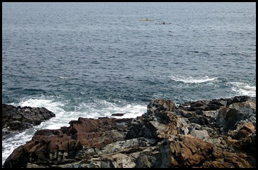 08k - Marginal Way - view and kayakers