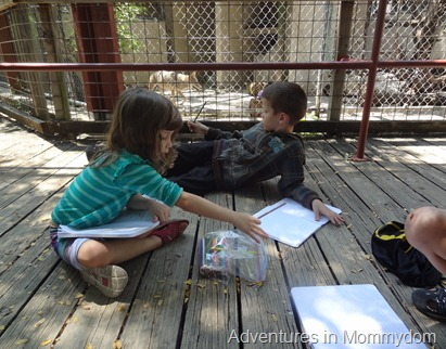 nature study at the zoo