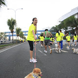 Pet Express Doggie Run 2012 Philippines. Jpg (47).JPG