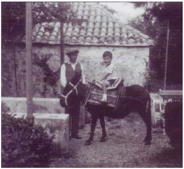 Illich Donkey