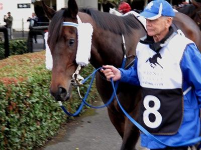 race6__kulgrinda