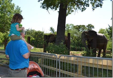 July 21 2011 Zoo KC 085